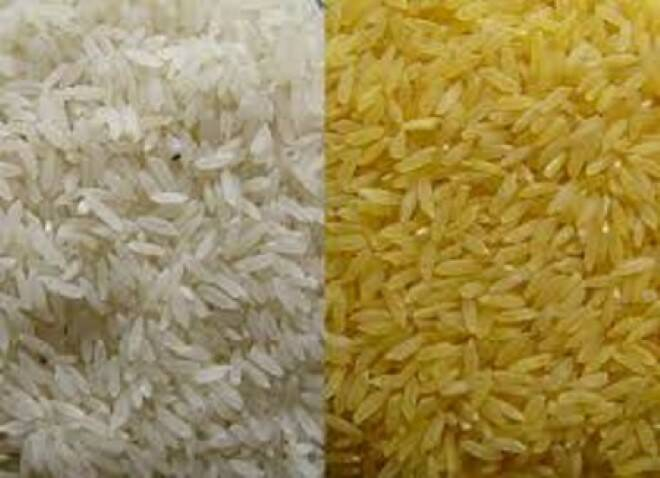 Sobre el Golden Rice.